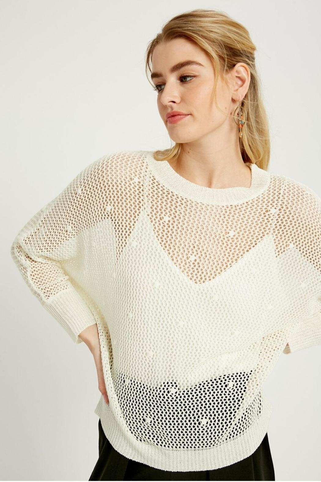 Wishlist Open-Knit Crochet Top - Front Cropped Image
