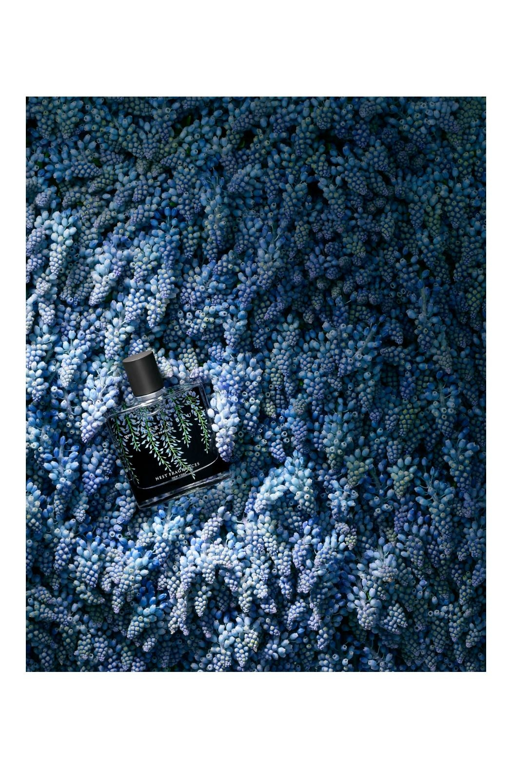 Nest Fragrances Wisteria Blue Eaudeparfum - Front Full Image