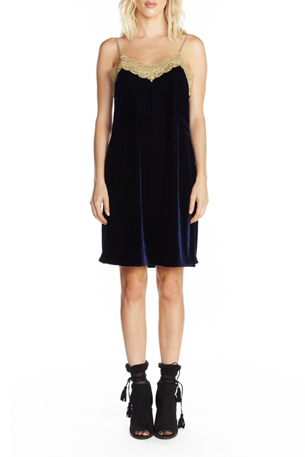Aratta Without You Mini Dress - Front Cropped Image