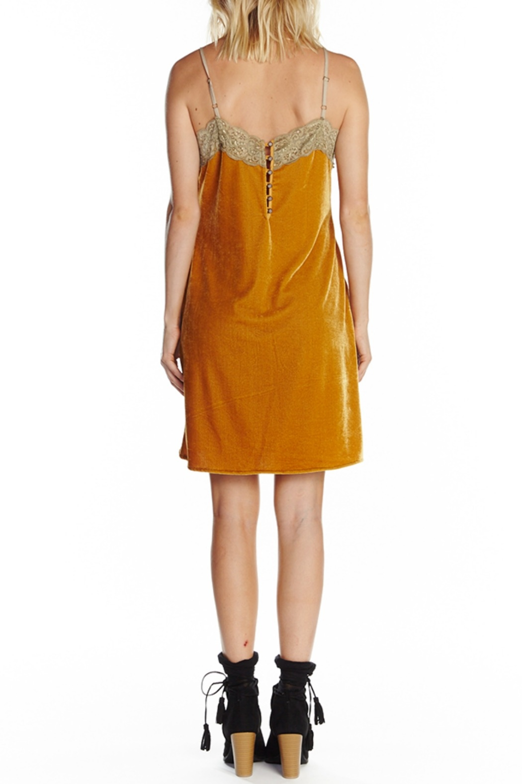 Aratta Without You Mini Dress - Side Cropped Image