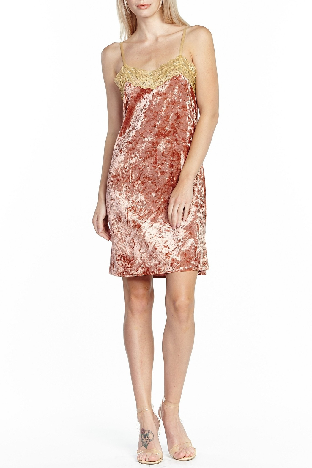 Aratta Without You Velvet Mini Dress - Front Cropped Image