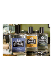 Proraso WOOD AND SPICE COLOGNE - Front full body