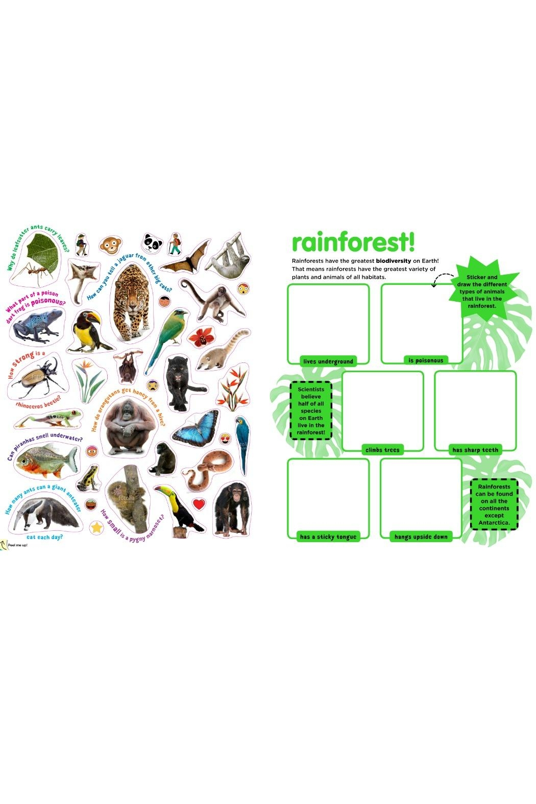 Workman Publishing Sticky Facts Animals - Front Full Image