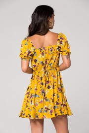 Band Of Gypsies WR336060 MELBOURNE DRESS - Back cropped