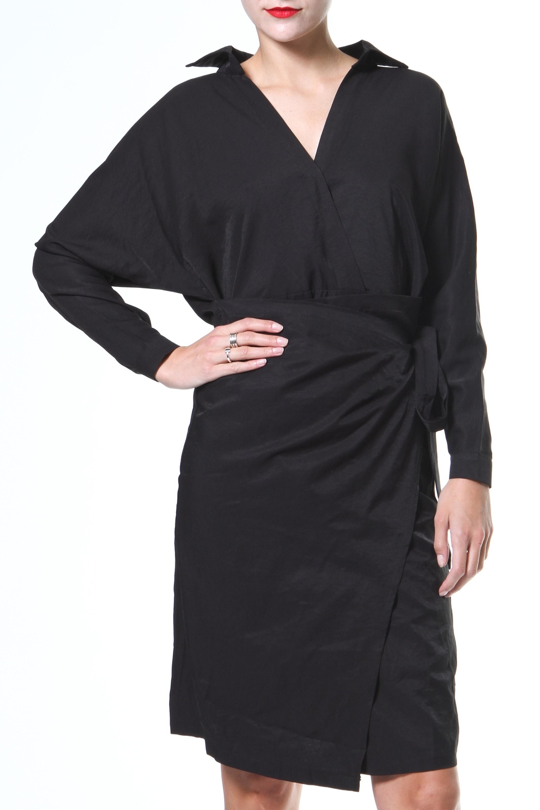 Madonna & Co Wrap Front Dress - Front Cropped Image