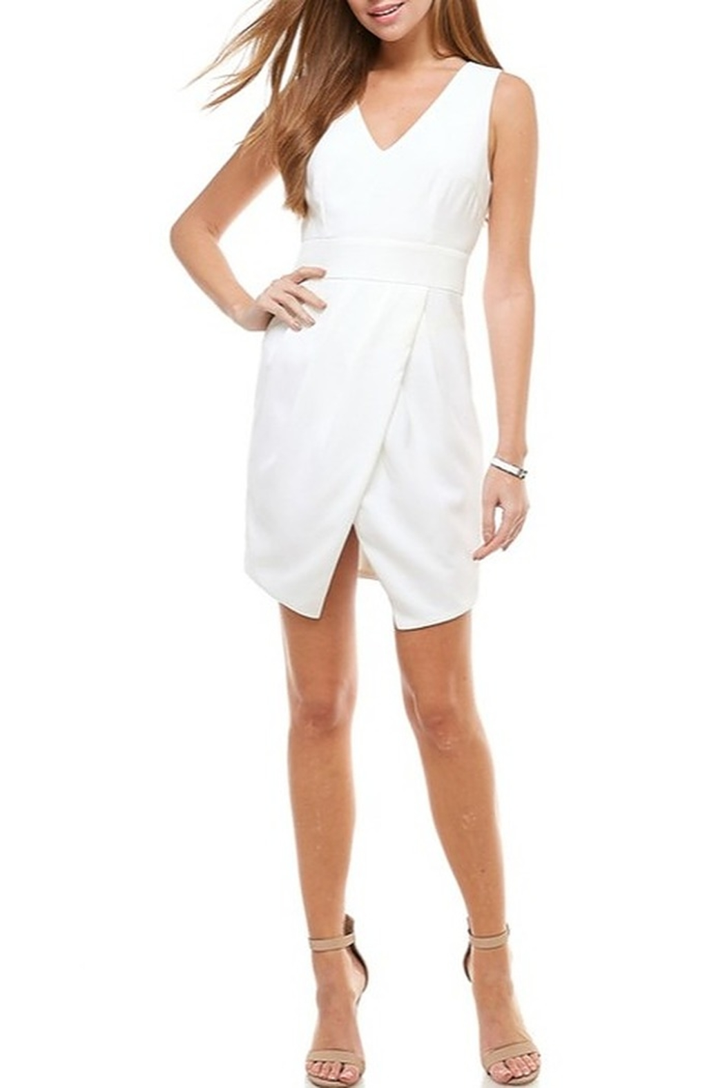 TCEC Wrap Front Dress - Back Cropped Image