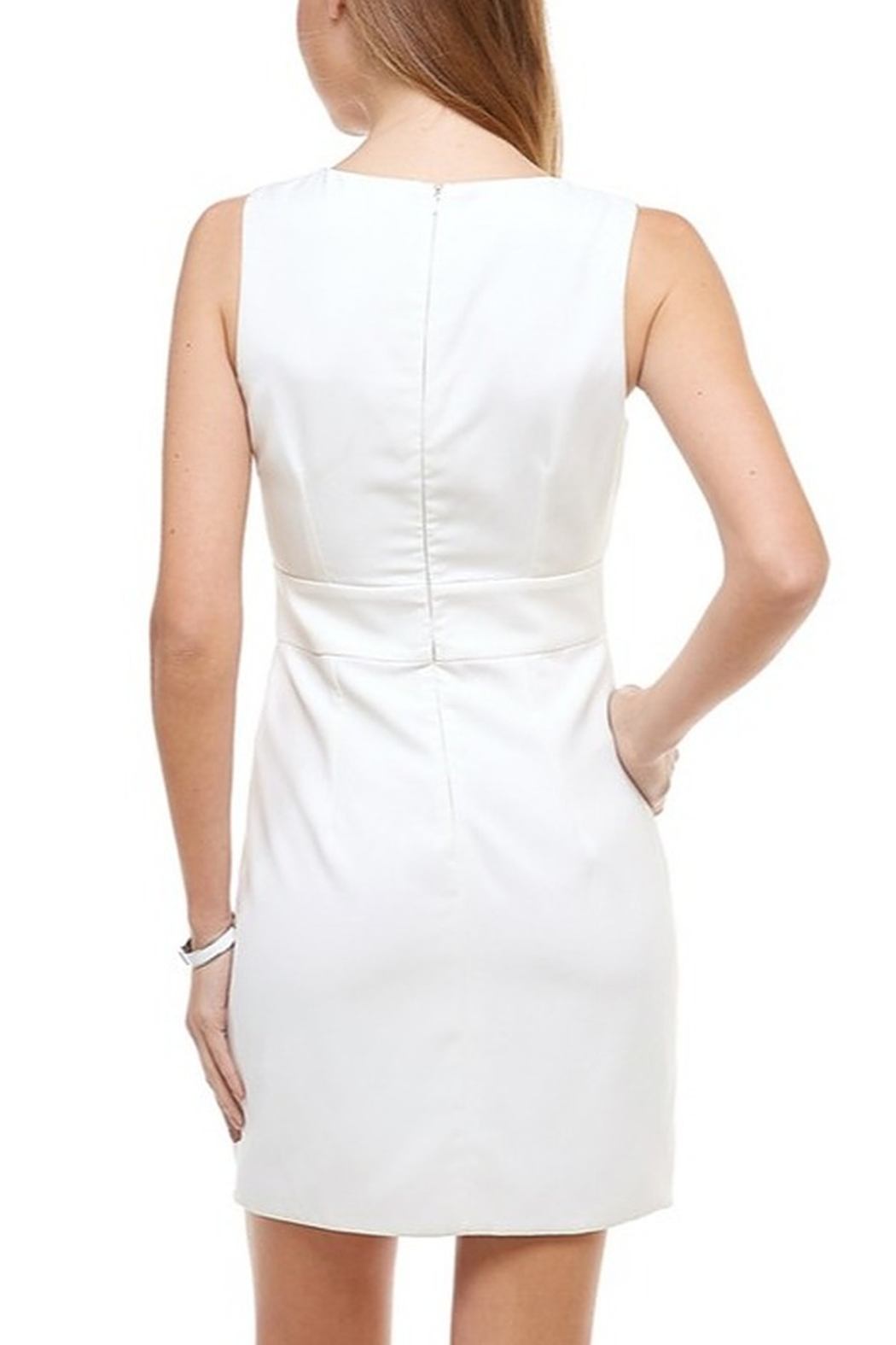 TCEC Wrap Front Dress - Side Cropped Image