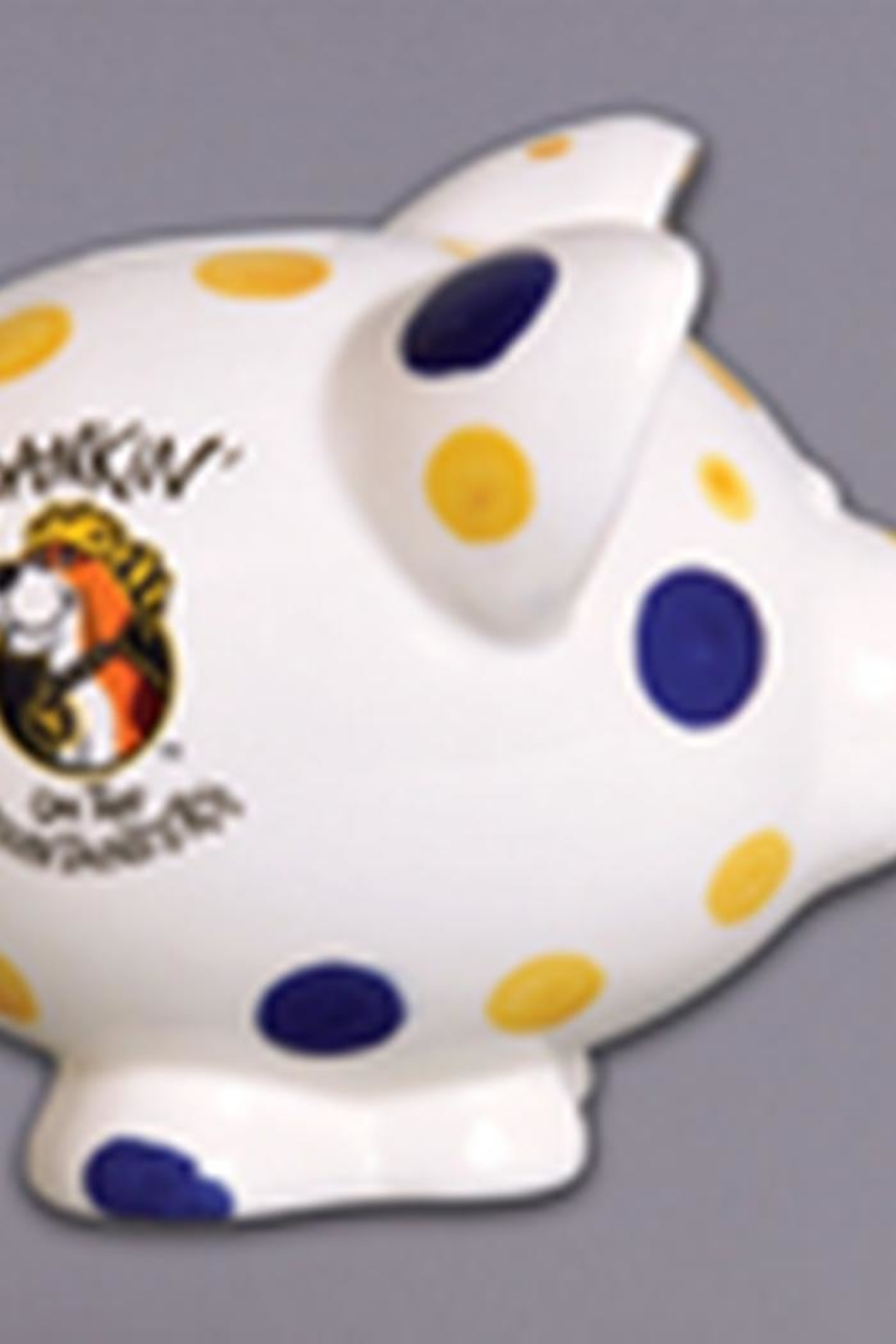 Magnolia Lane Wvu Piggy Bank - Front Cropped Image