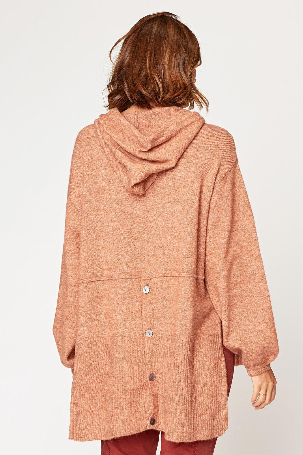 XCVI Wearables Smoked Paprika Tiller Hoodie - Side Cropped Image