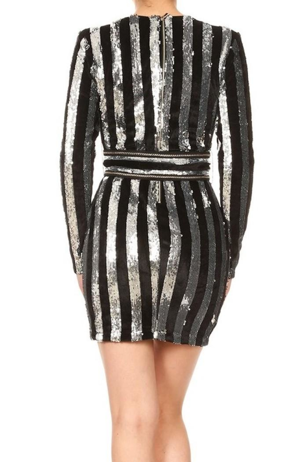 Xtaren Velvet Sequin Dress - Back Cropped Image