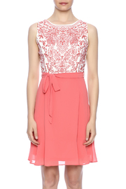 Ya Los Angeles Coral Embroidered Dress - Side cropped