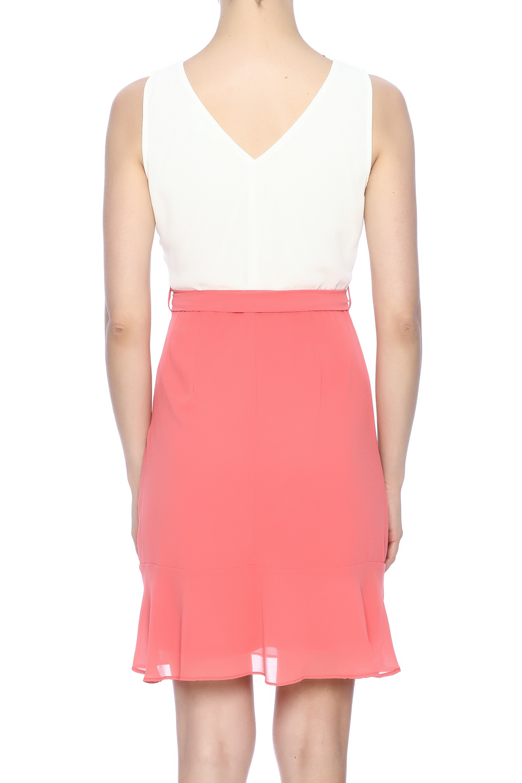 Ya Los Angeles Coral Embroidered Dress - Back Cropped Image