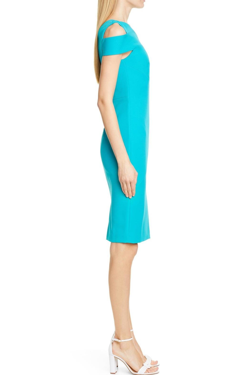 Ted Baker London Yandal Body-Con Dress - Side Cropped Image