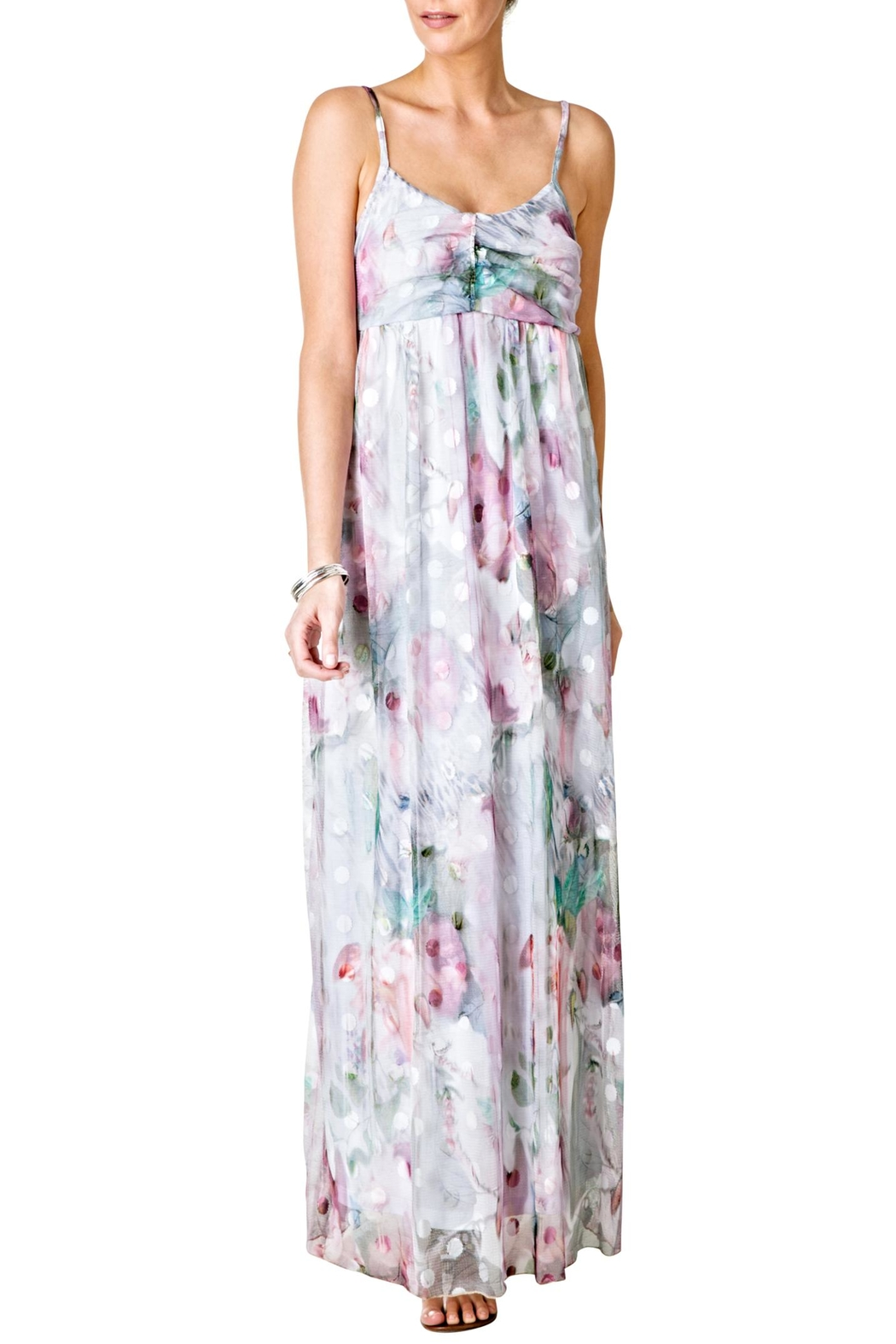 Yest flower maxi dress from chicago by what she wants boutique yest flower maxi dress front cropped image mightylinksfo