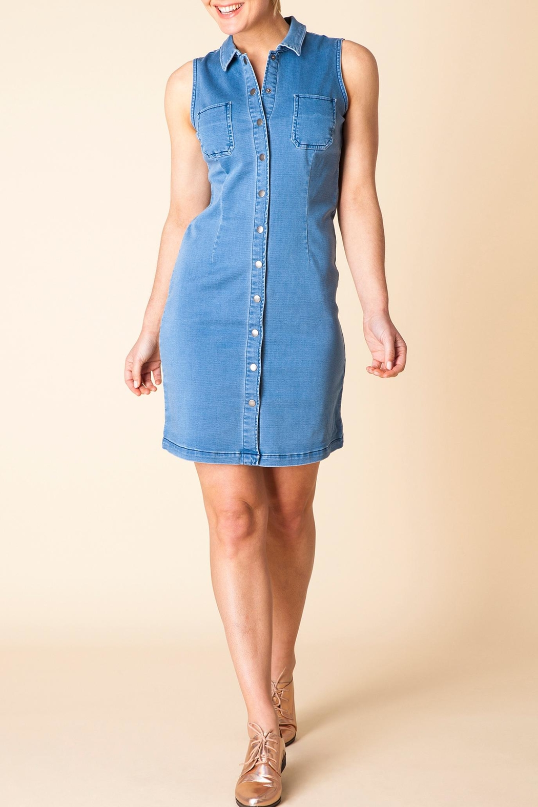 Yest The Denim Dress - Main Image