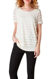 Yest Transparent Stripe Top - Product Mini Image