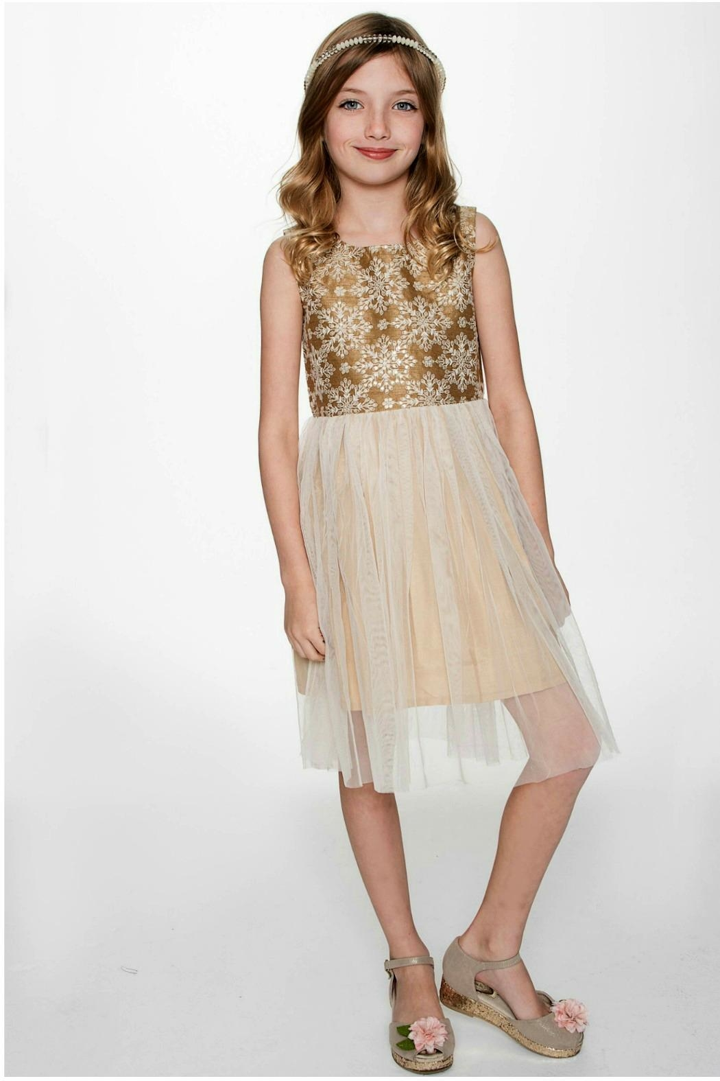 YO BABY Snowflake-On-Gold Tulle Dress - Main Image