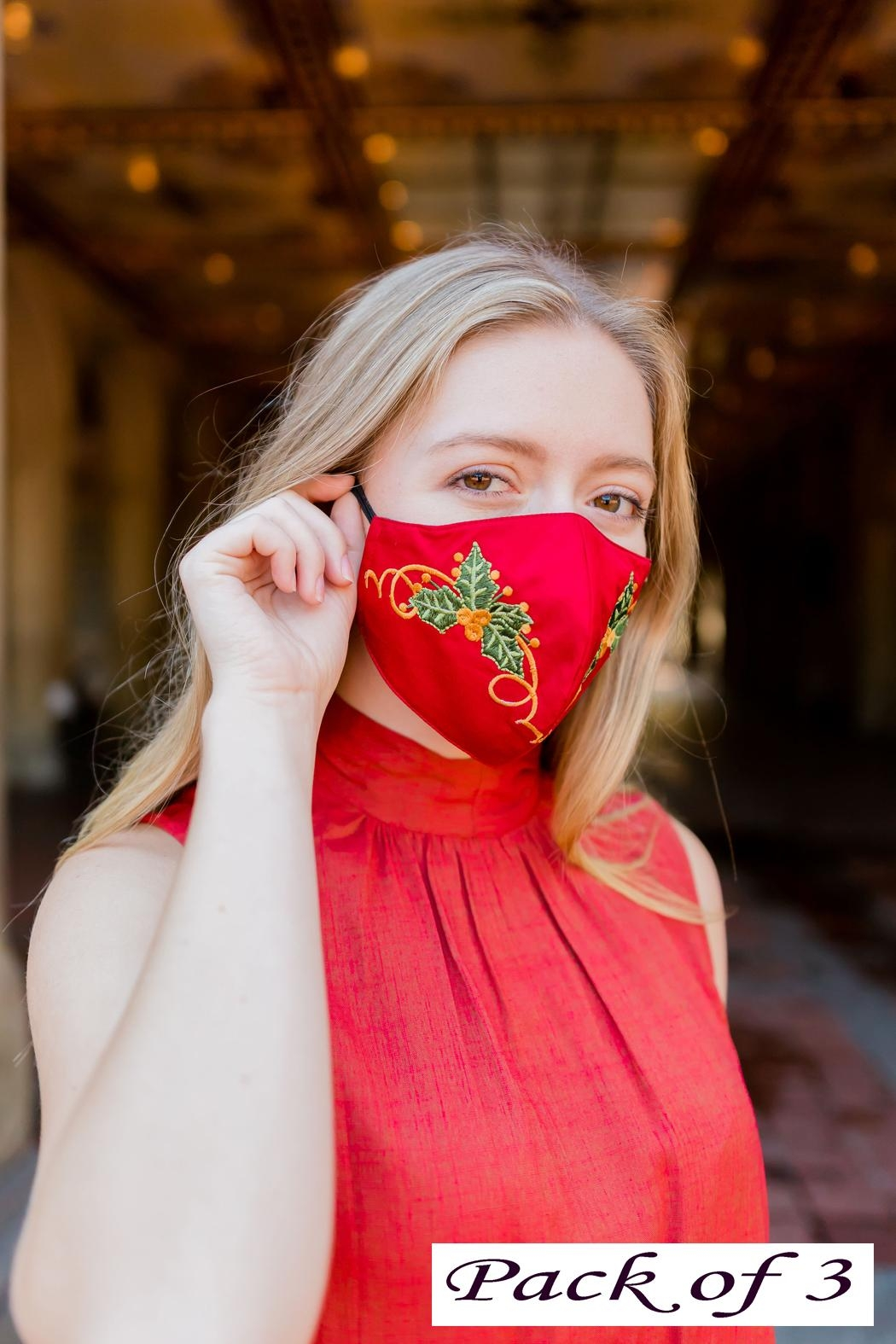 Young Threads Charismas Gift, Holiday Embroidered Face Mask, 3layered, 100% Cotton Lining Pack Of 3 - Main Image