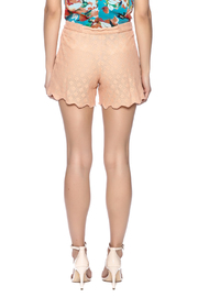 Z&L Europe Peach Lace Shorts - Back cropped