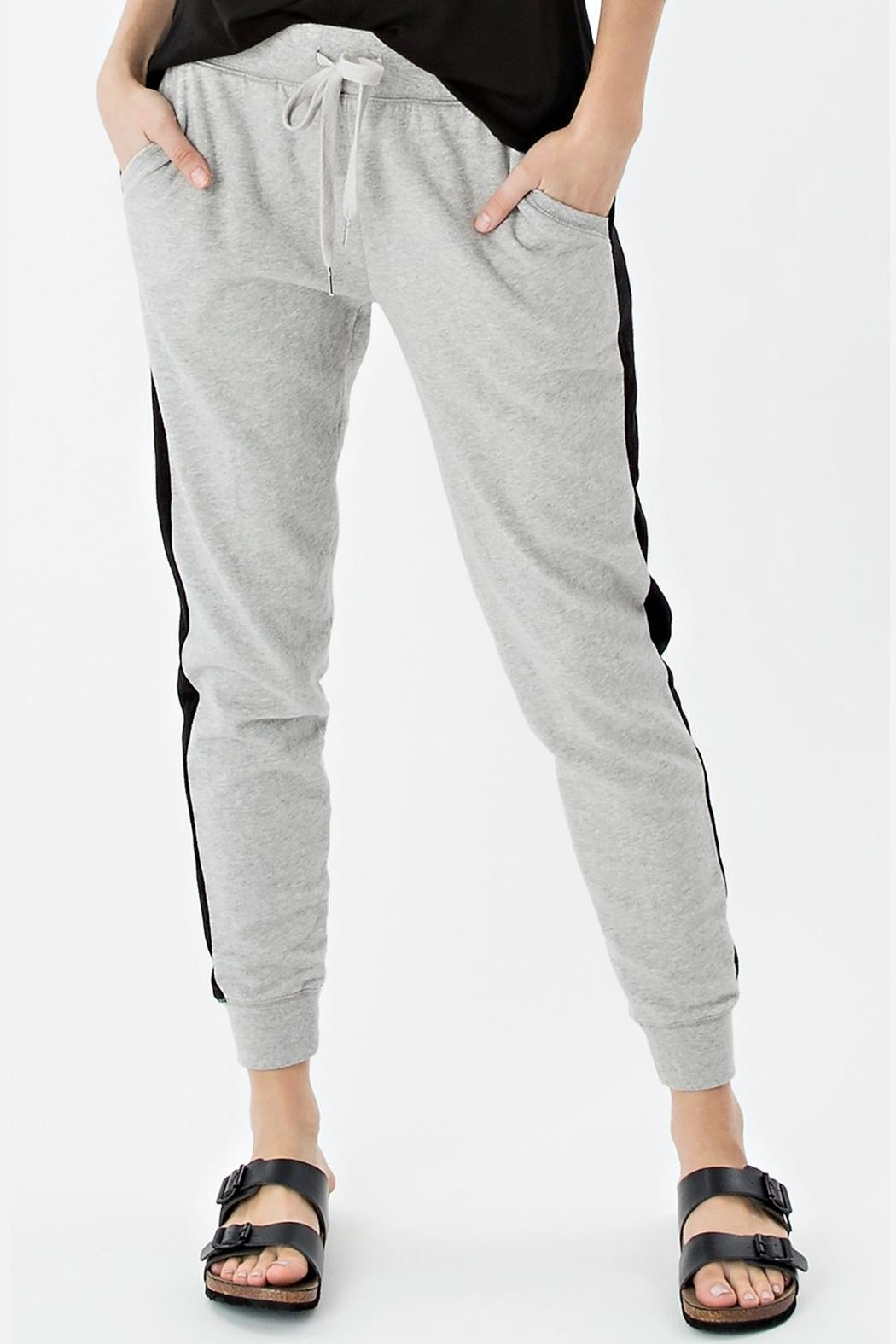 z supply Athleisure Jogger Pant - Front Cropped Image