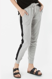 z supply Athleisure Jogger Pant - Other
