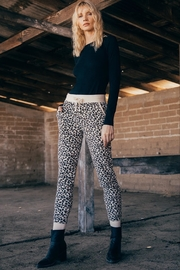 z supply Brushed Leopard Jogger - Product Mini Image