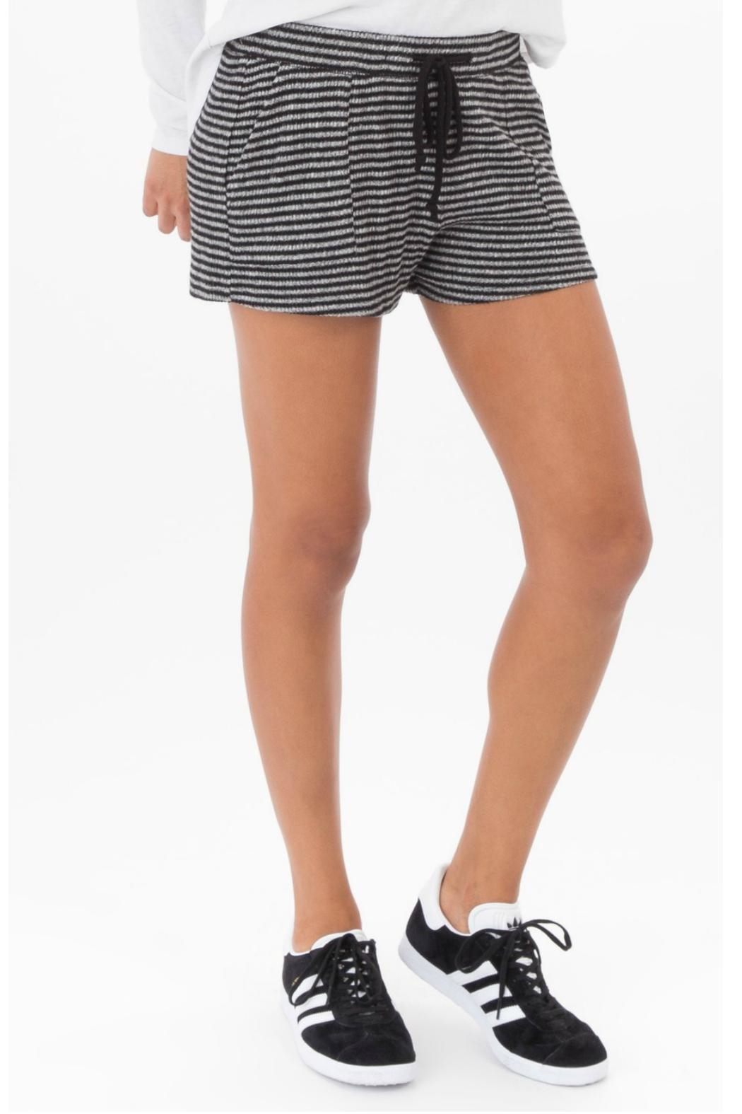 z supply Brushed Rib Short - Front Cropped Image