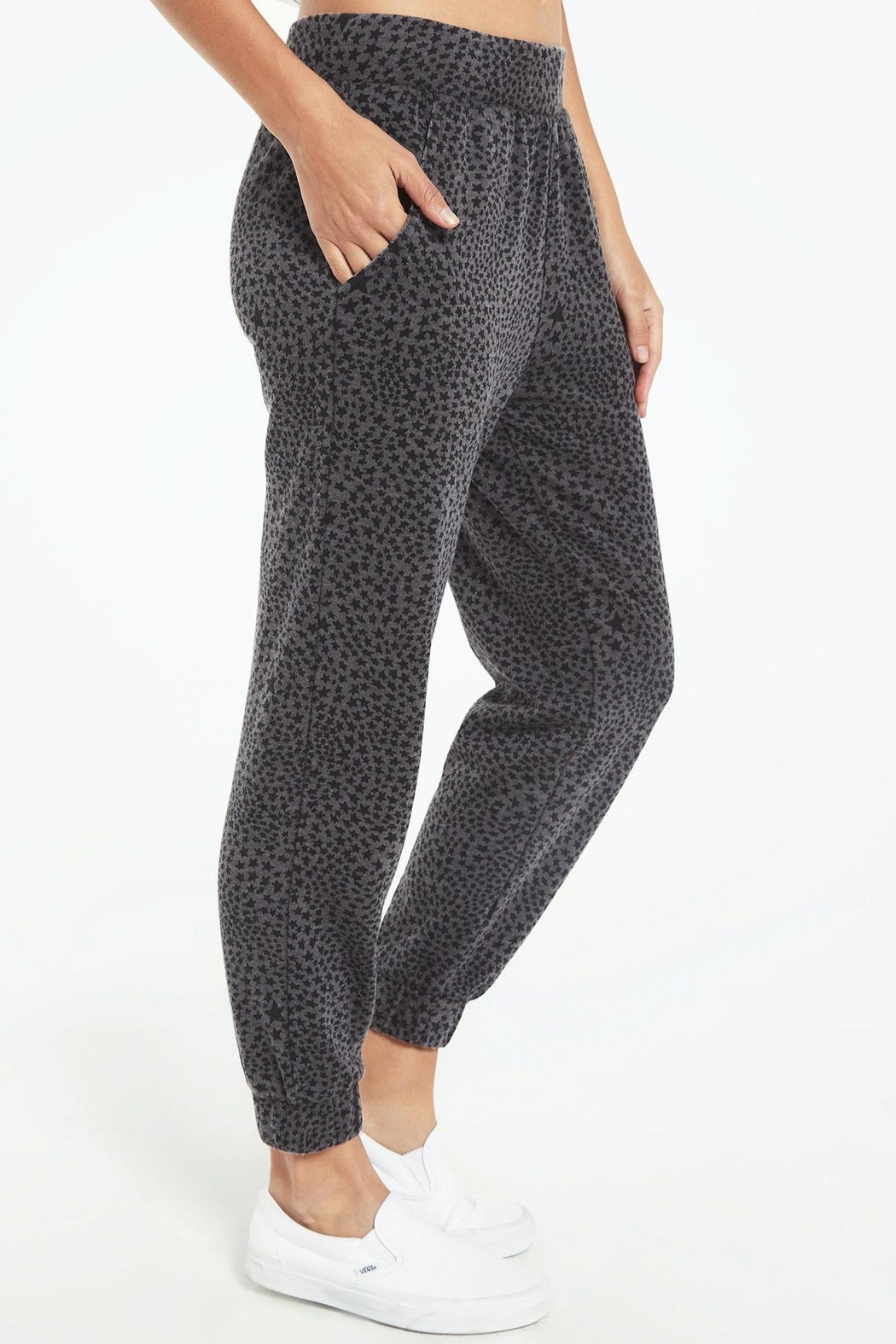 z supply Cadence Stardust Jogger-Charcoal - Back Cropped Image