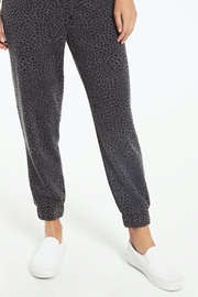 z supply Cadence Stardust Jogger-Charcoal - Front cropped
