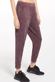 z supply Cadence Stardust Jogger-Merlot - Front cropped