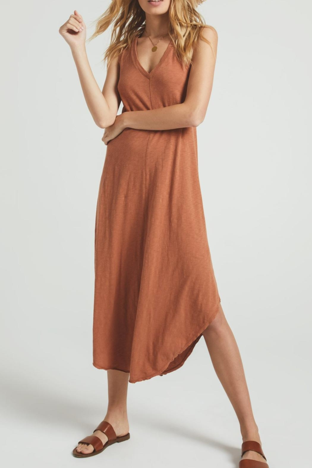 z supply Reverie Brown Dress - Back Cropped Image