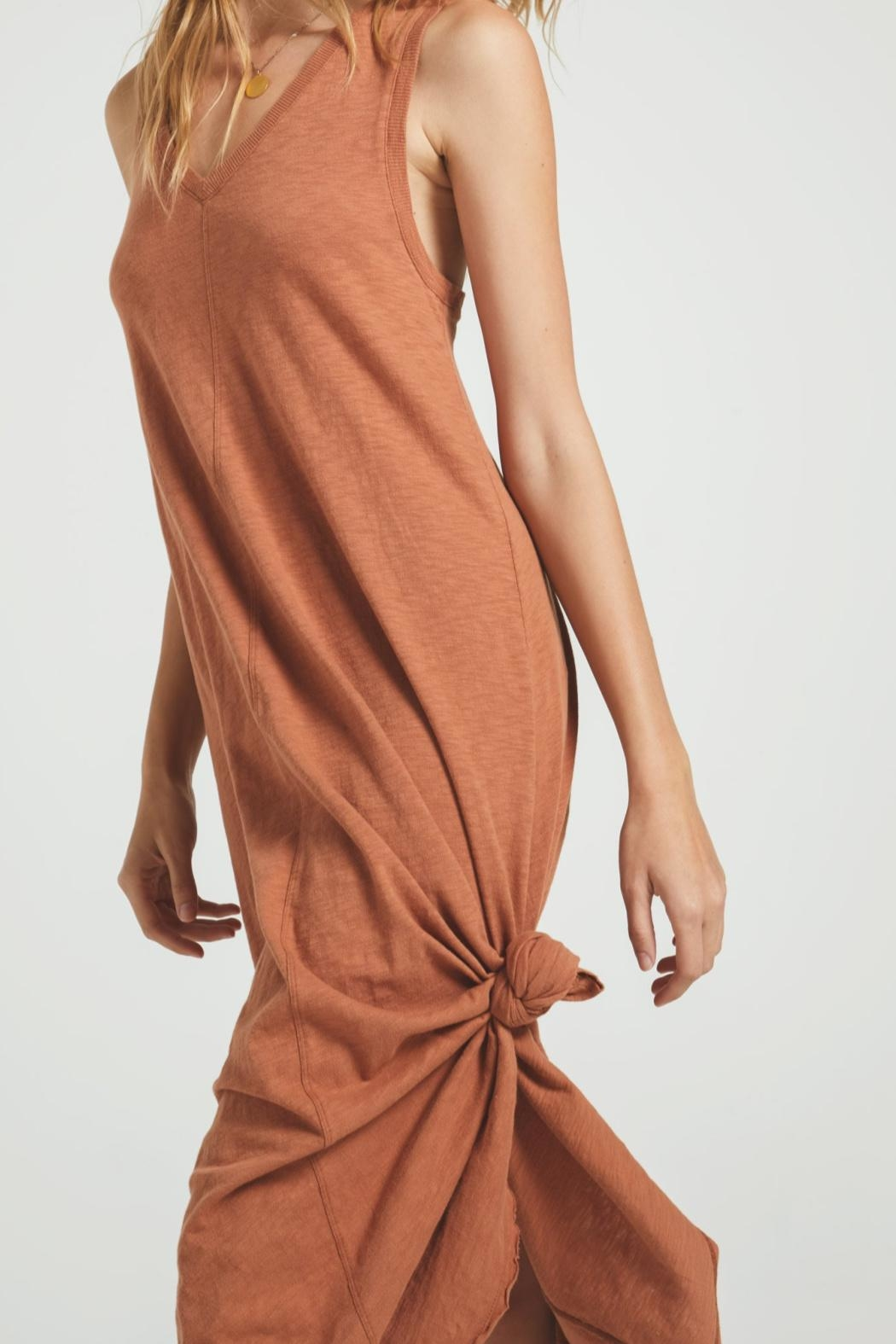 z supply Reverie Brown Dress - Side Cropped Image