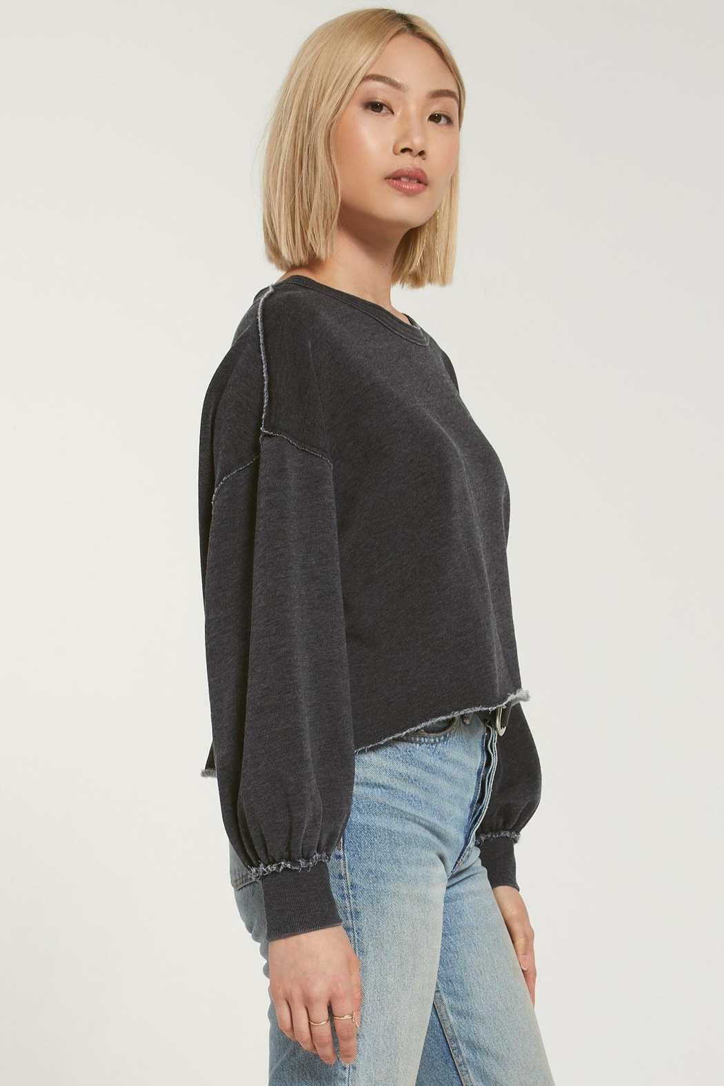 z supply Tempest Sweatshirt - Side Cropped Image