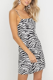 Lush Clothing  Zebra-Print Mini Dress - Product Mini Image