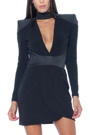 Zhivago Swallow Dress - Front cropped