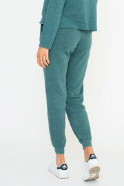 Sol Angeles Zion Jogger - Glade - Front full body