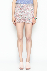 Zoa Multicolor Dot Shorts - Front full body
