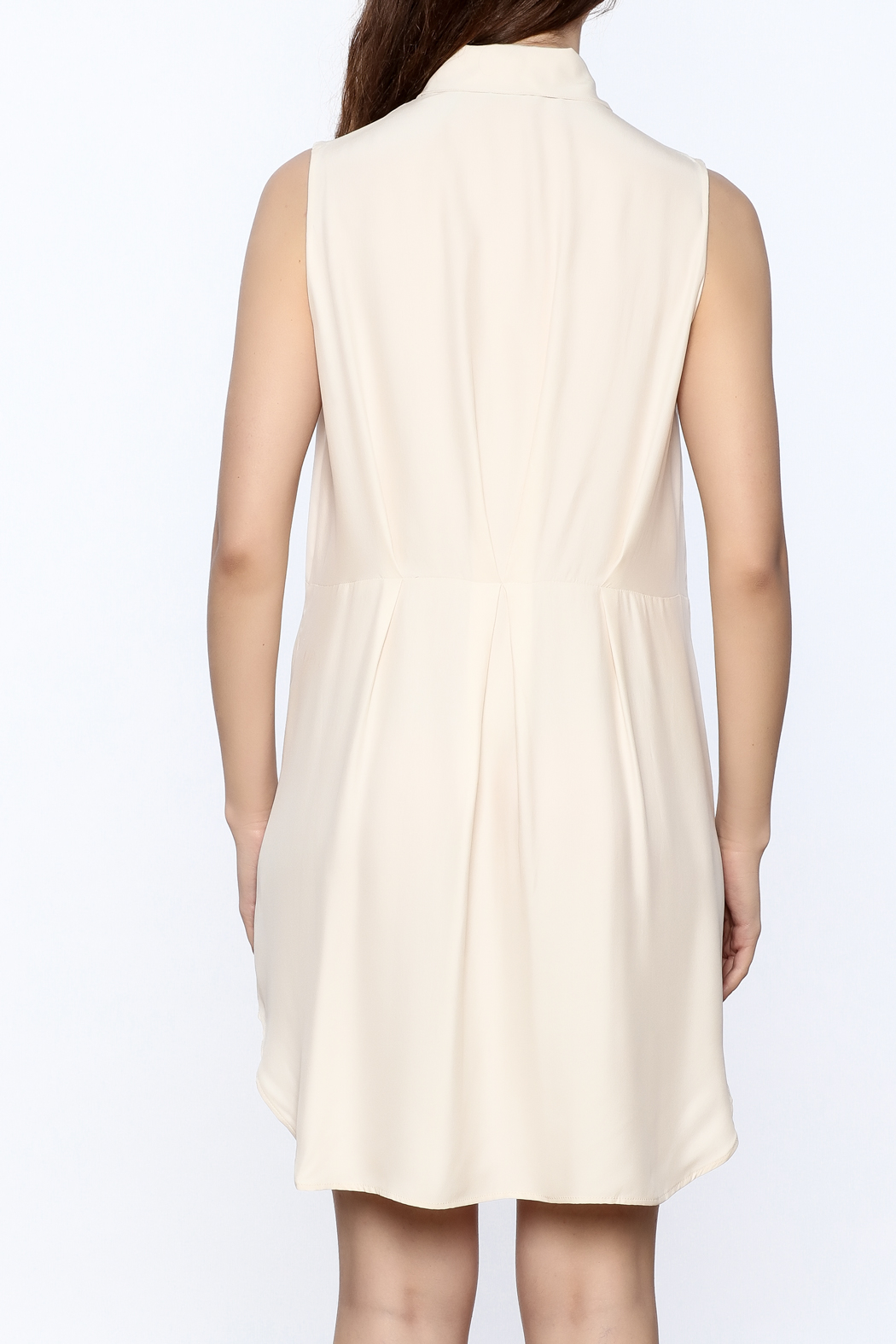 Zoa Beige Silk Dress - Back Cropped Image