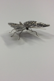 Zodax Antique Pewter Butterfly - Front full body