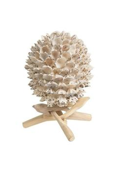 Shoptiques Product: Shell On Stand