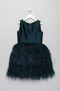 Shoptiques Product: Feathered Dress