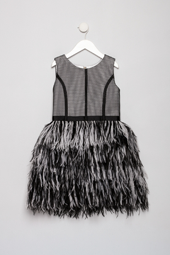 Shoptiques Product: Feathered Dress With Mesh