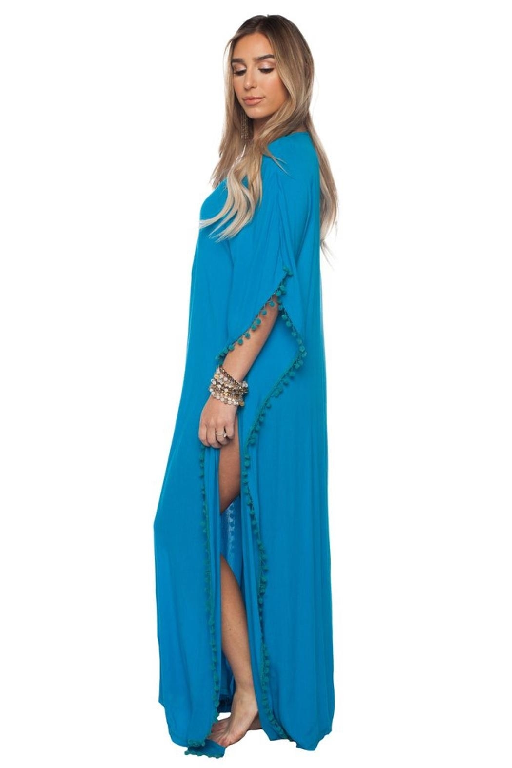 Buddy Love Zora Maxi Dress - Front Full Image