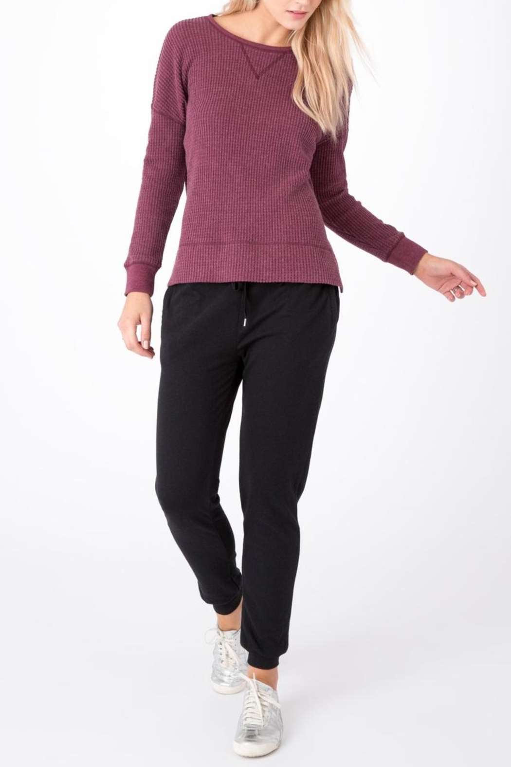 Zsupply Double Knit Jogger - Side Cropped Image