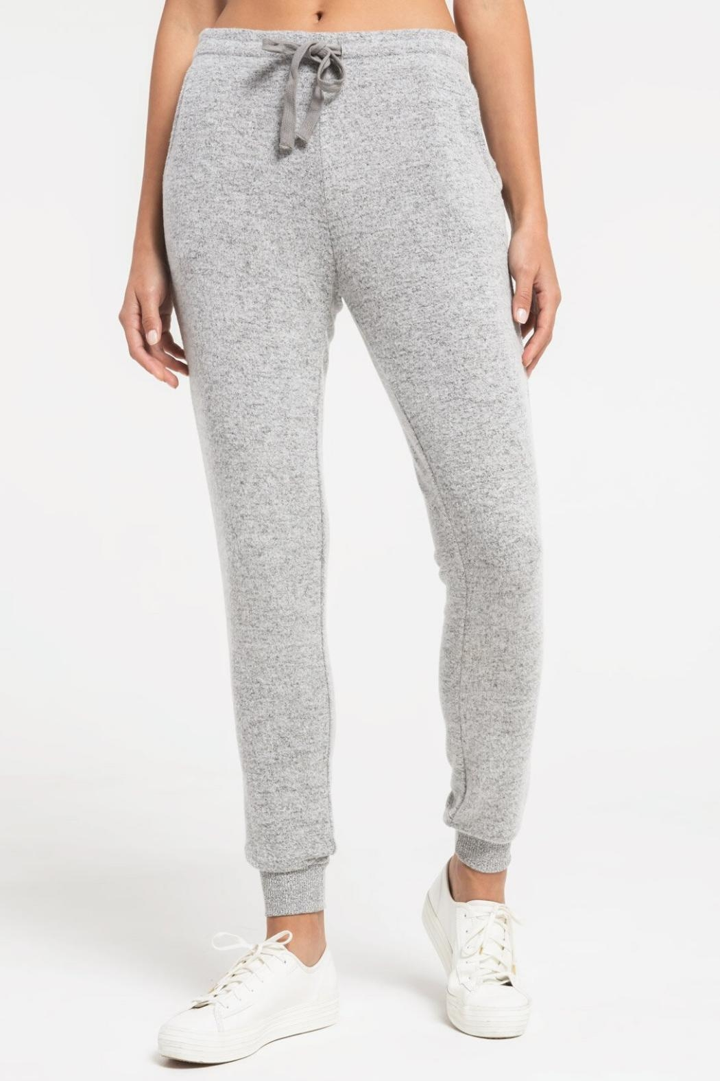 Zsupply Marled Jogger, Heather Gray - Side Cropped Image