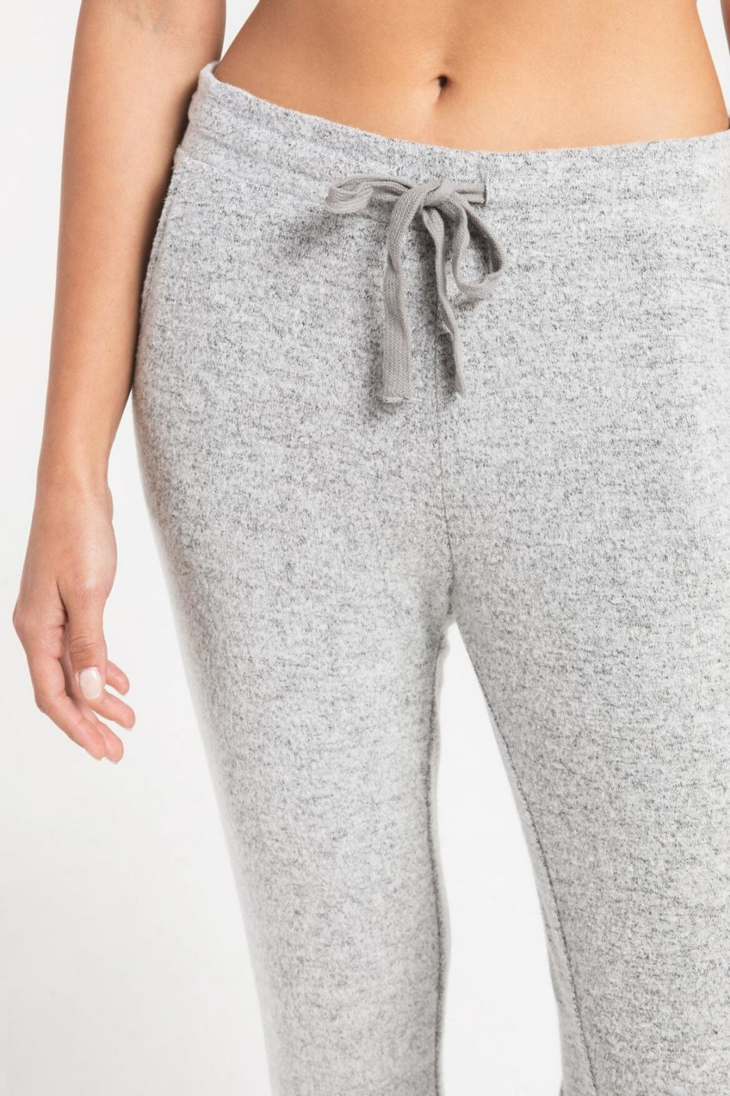 Zsupply Marled Jogger, Heather Gray - Front Full Image