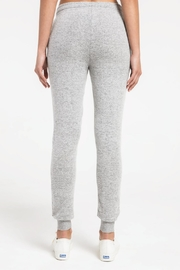 Zsupply Marled Jogger, Heather Gray - Other