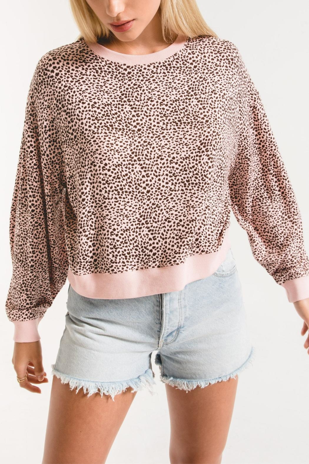 Zsupply Mini Leopard Pullover - Front Cropped Image