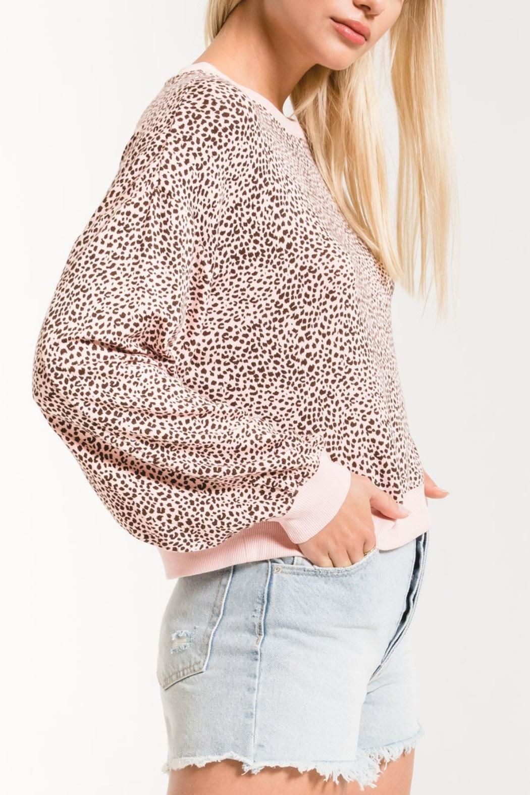 Zsupply Mini Leopard Pullover - Front Full Image
