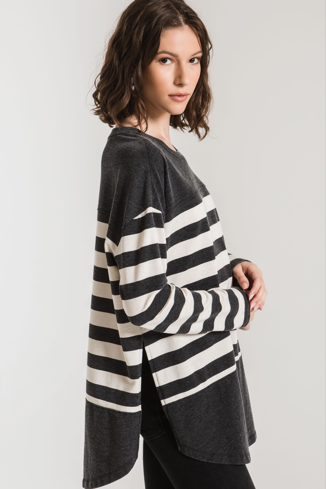 Zsupply Mordern Stripe Crew - Back Cropped Image